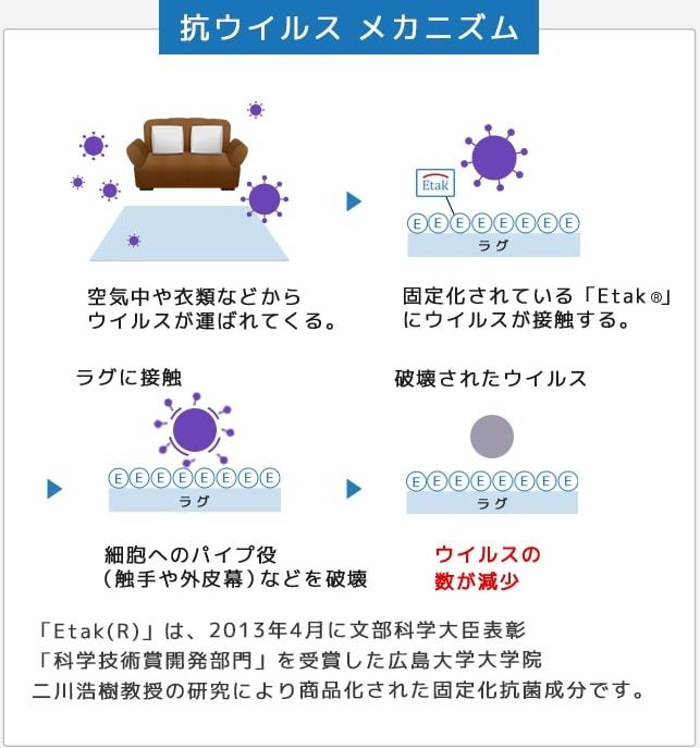抗ウイルス メカニズム